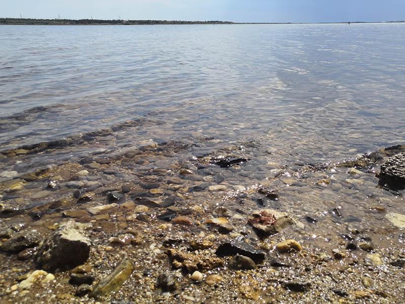 сакское озеро в крыму фото